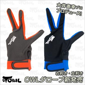 owl-glove.jpg