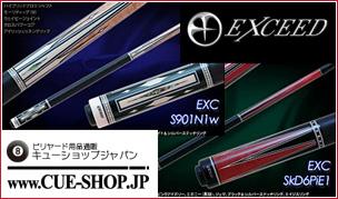 101-exc-pie1.jpg