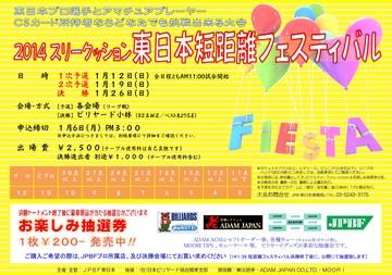2014_FIESTA_1.jpg