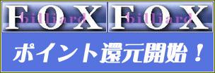 foxpoint.jpg